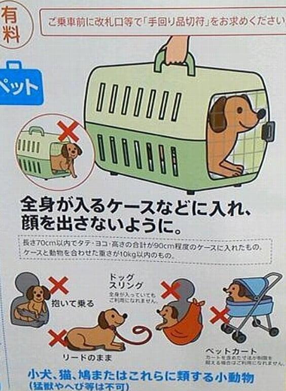 JR(電車)にペットを持ち込んで普通に乗れる??